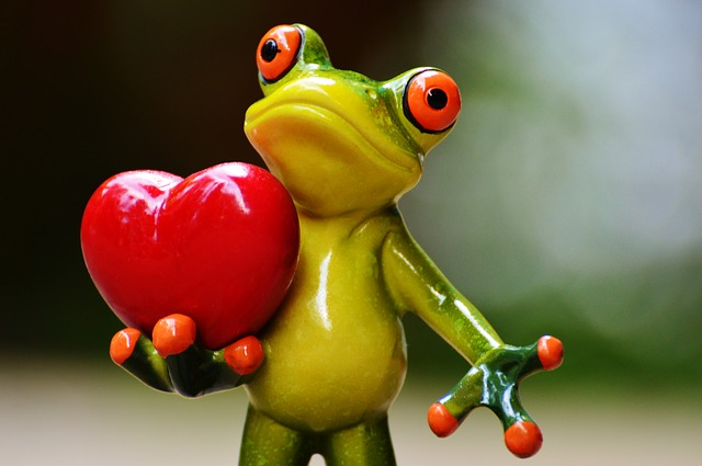 Valentine's Day Email Marketing Frog