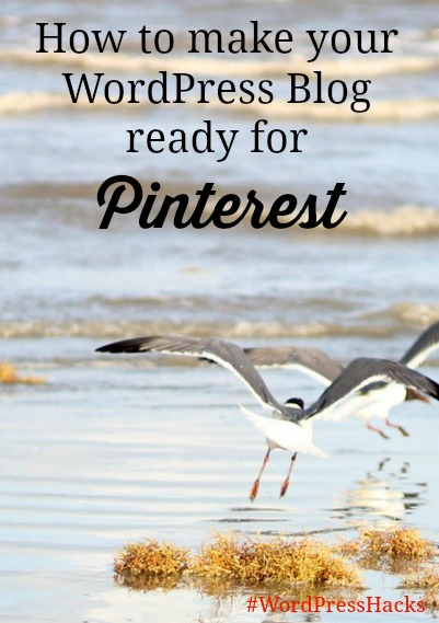 Make WordPress Blog Ready for Pinterest