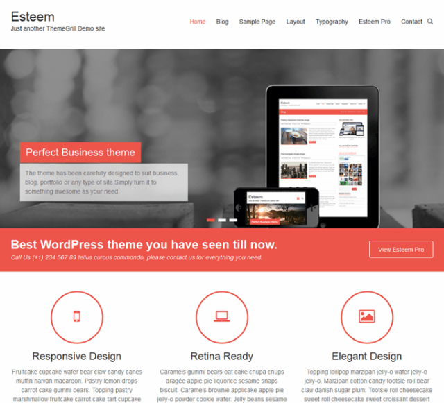 Esteem WordPress theme