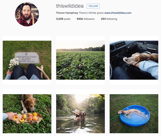 this-wild-idea-instagram