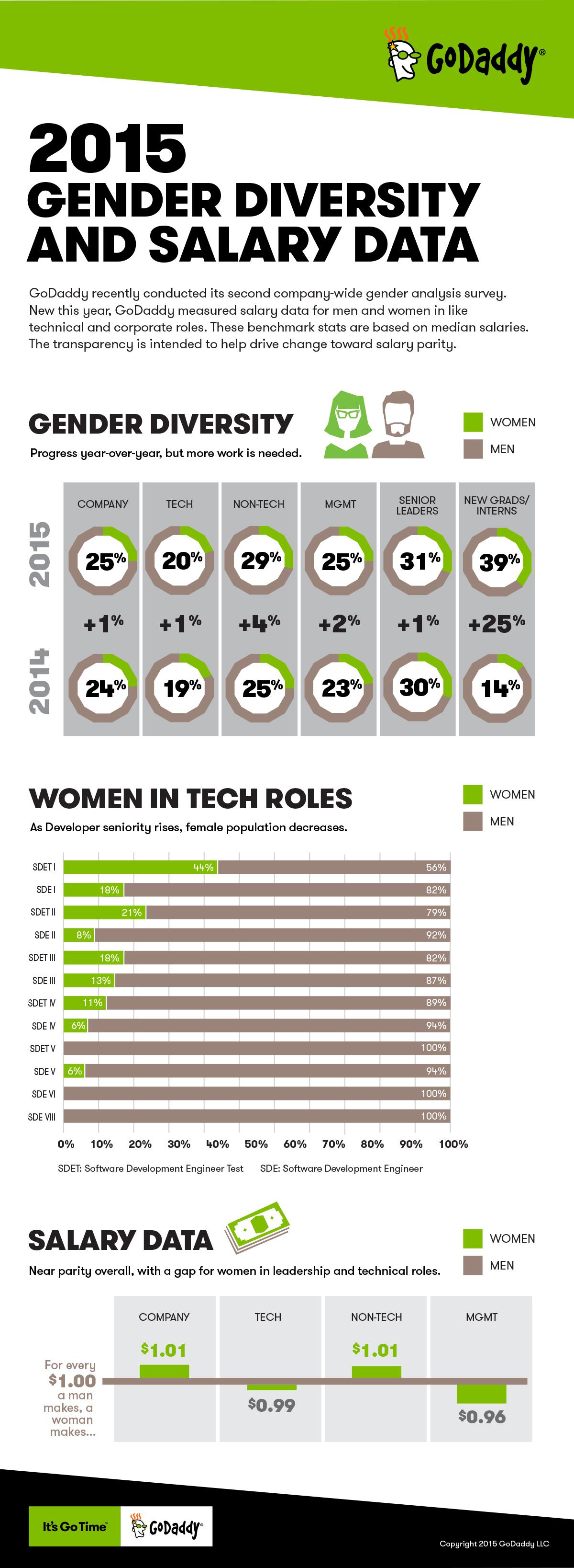 GoDaddy Compensation Parity 2015 Info Graphic