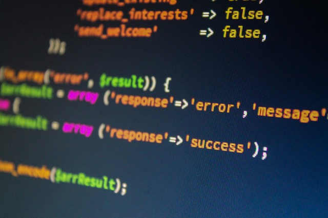 Website Developer Code