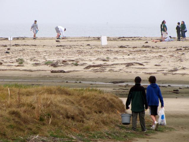 Volunteering Beach Cleanup