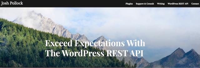Curso API de WordPress Desarrollo de Capacidades WP RESTO