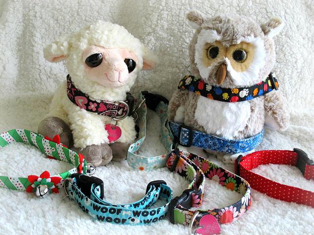 Social Media Marketing for Pet Stores Collars