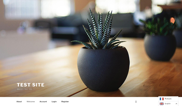 Screenshot of the Weglot language switcher on a WordPress site