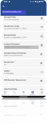 Domain name example in GoDaddy Investor app