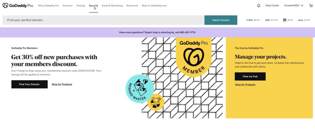 GoDaddy Pro Security