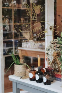 Bottles and plant in window display