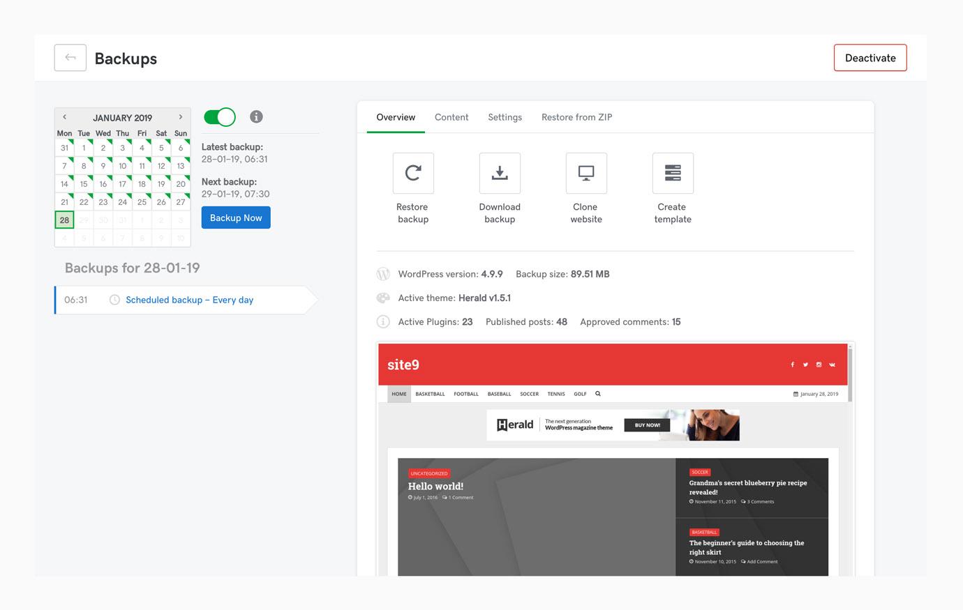 website management backup