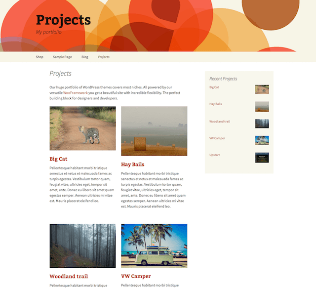 Best WordPress Portfolio Plugins Projects by WooThemes