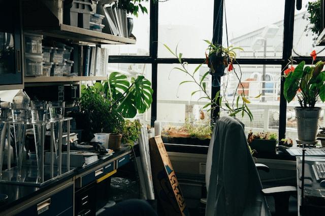 Biotech Startups Desk