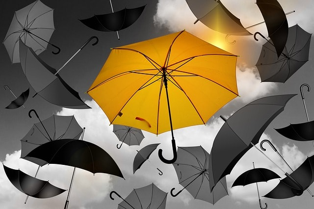 Build A Real Estate Website Yellow Umbrella Different