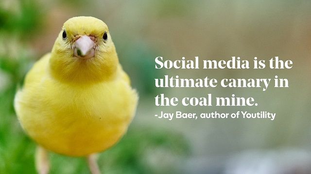 Canary with Jay Baer Social Media Quote