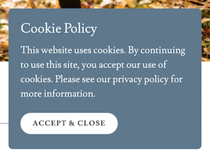 example of a cookie pop-up