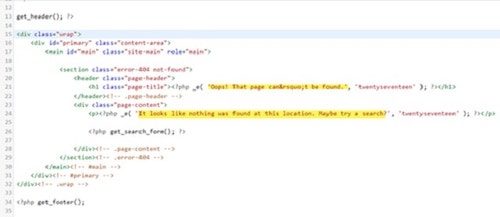 custom 404 Page WordPress Coding