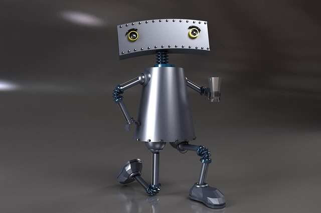 Development Challenges Robot