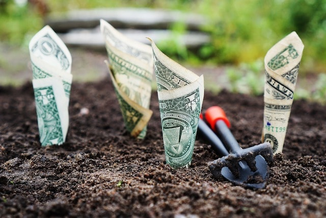 Dollar Bills in Ground Represent Seed Funding