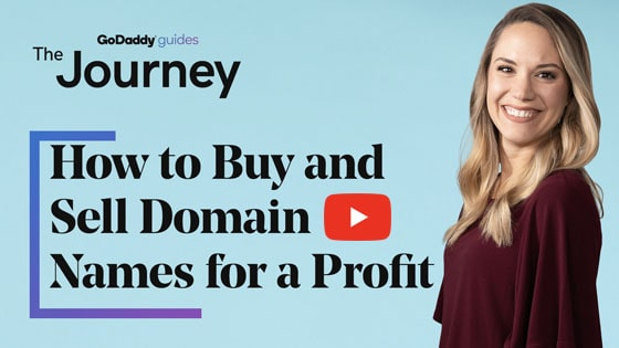 Domain Investing Journey Video