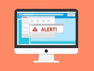eCommerce Web Security Alert