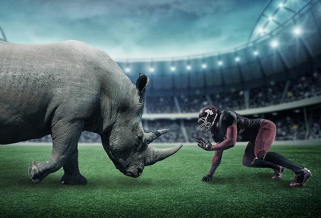 Fantasy Football Strategy
