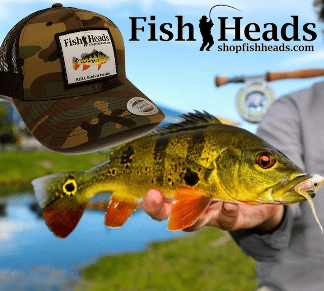 FishHead Fish