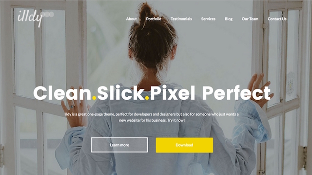 Free Portfolio WordPress Themes Illdy