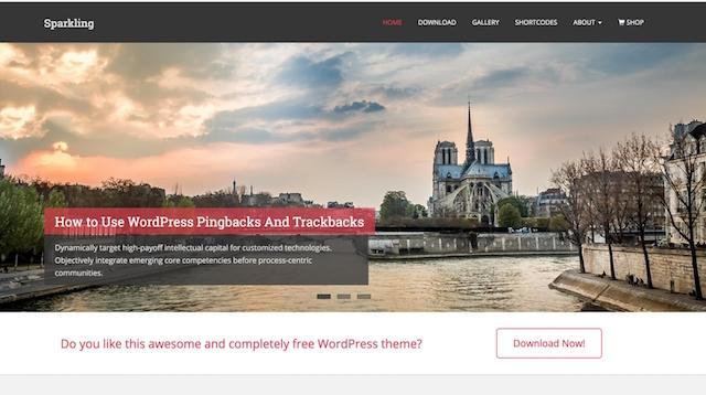 Free Portfolio WordPress Themes Sparkling