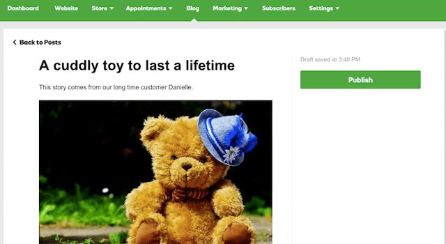 GoDaddy GoCentral Blog Feature Bear