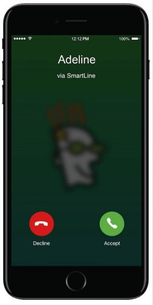 GoDaddy SmartLine Business Call