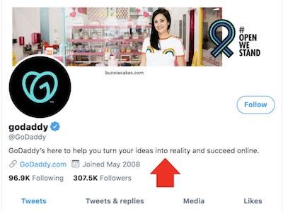 GoDaddy Twitter Bio