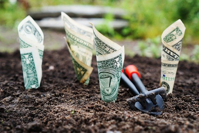 Money Stuck In The Dirt With Gardening Tools Nearby