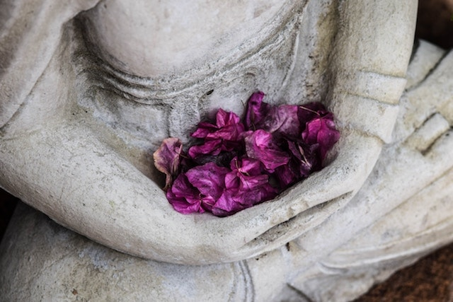 Holistic Medicine Flowers
