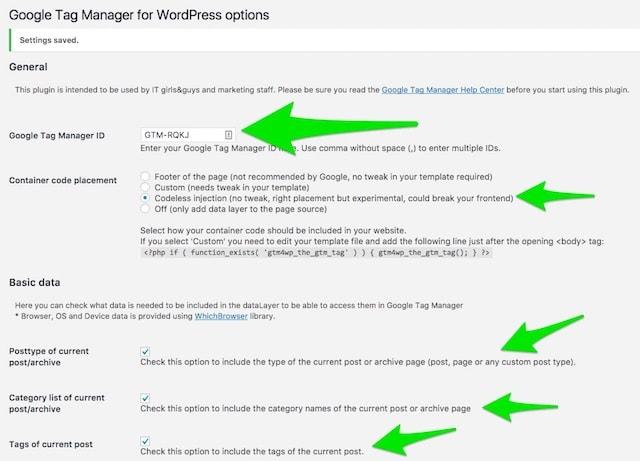 Google Tag Manager WordPress Options