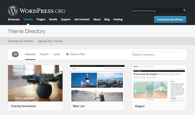 How To Blog With WordPress Theme