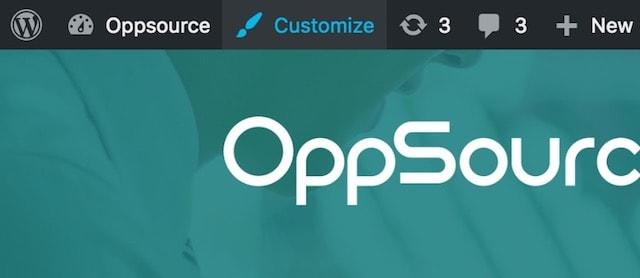 How to Customize WordPress Theme Customizer
