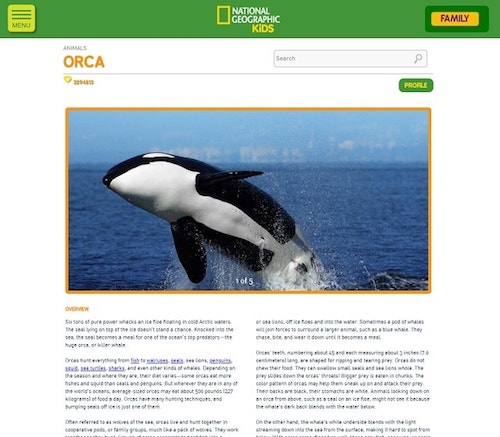 How To Design A Website National Geographic