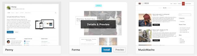WordPress Theme Details Preview