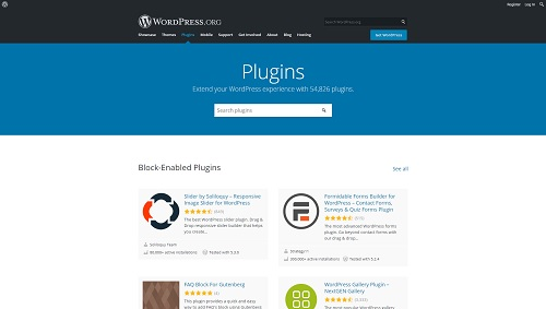 WordPress Plugins Page