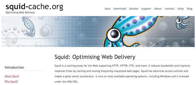Squid Cache website screen shot