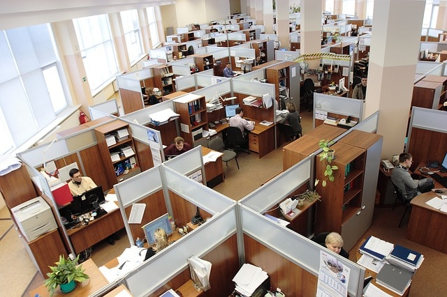 In-House Employees Cubicles