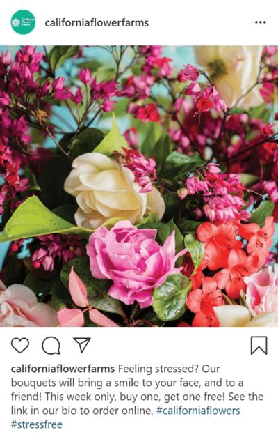Post Instagram de fleurs qui dit acheter un en obtenir un gratuitement et voir le lien dans la biographie