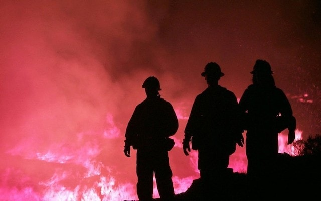 Insurance Industry Trends Wildfire