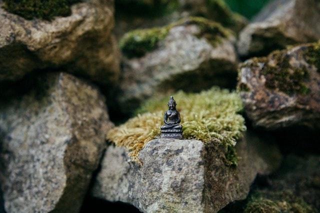 Landscape Designer Buddha