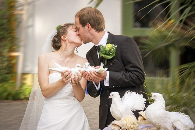 Local Wedding Venue Doves