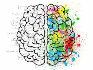 Mindfulness For Entrepreneurs Colorful Brain