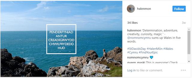 Multilingual Social Network Hale Mon Instagram