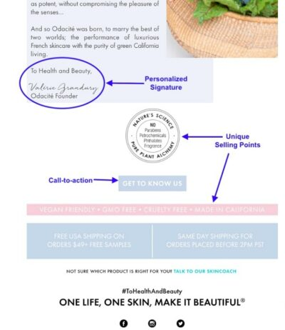 Nurture Email Subscribers Skincare Example Suggested Elements