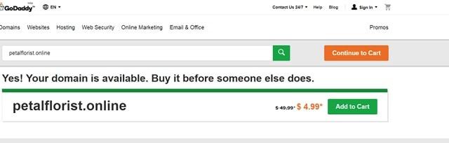 .online Domain Extension