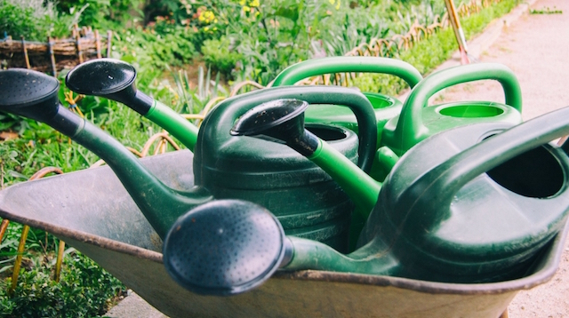 Property Management Watering Cans